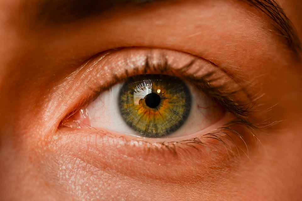 couleur oeil